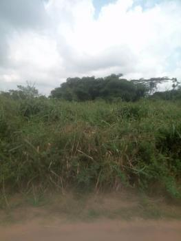 100×100 Plot of Land, Ovia North-east, Edo, Residential Land for Sale