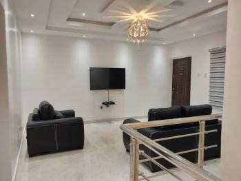 Exquisite Fully Furnished & Serviced Duplex, Osapa, Lekki, Lagos, Detached Duplex Short Let
