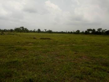 Cheap Land for Sale with Excision in Ibeju-lekki,lagos, Lekki Expressway, Lekki, Lagos, Residential Land for Sale