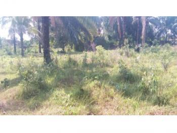 a Vacant Land, Emene, Enugu, Enugu, Residential Land for Sale