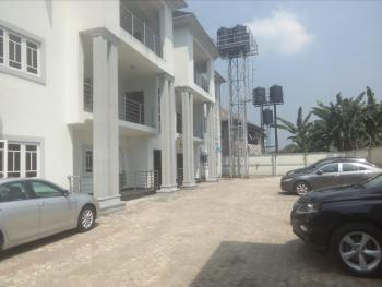 Exquisitely Finished 3 Bedroom Flat with World Standard Facilities, Farm Road, Eliozu, Port Harcourt, Rivers, Flat for Rent