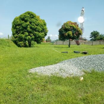 325sqm Dry Land in Eden Gardens Estate, Eden Garden Estate, Ajah, Lagos, Residential Land for Sale