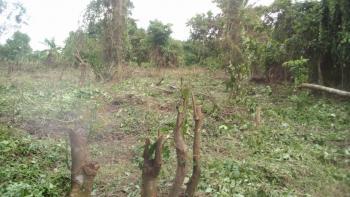 2 Acres of Farm Land for Sale @okeseyin Village, Idi Ayunre Oluyole L.g. Ibadan, Idi Ayunre, Ibadan, Oyo, Commercial Land for Sale
