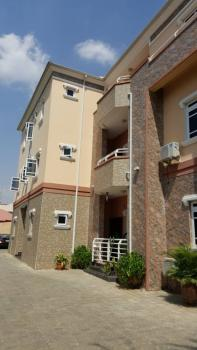 Lovely and Well Used 3 Bedroom Serviced Apartment with a Room Bq, Fitted Kitchen, Etc., Off Aminu Kano Crescent, Wuse 2, Abuja, Flat for Rent
