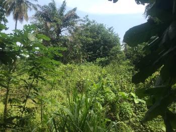 4000sqm Bareland, Off Ozumba Mbadiwe, Victoria Island (vi), Lagos, Mixed-use Land for Rent