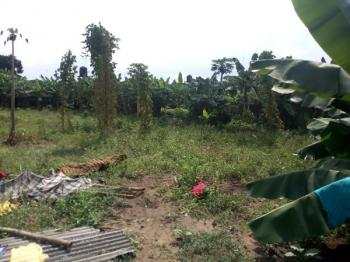 Simply Located 4 Plots of Dry and Firm Land at Off Rumuigbo, Port Harcourt, Rivers State., Iboloji Estate, Rumuigbo, Port Harcourt, Rivers, Mixed-use Land for Sale