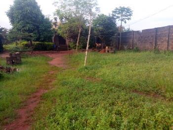 Uncompleted 4 Bedroom Penthouse on One and Half Plot of Land, 1, 1st Avenue Ilupeju Estate Ijaba, Sango Ota, Ogun, Semi-detached Bungalow for Sale