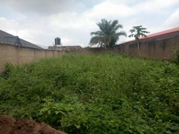 a Standard Plot of Land, Akala Express Oluyole Extension, Challenge, Ibadan, Oyo, Land for Sale