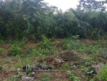 a Parcel of 2,660sqm Bare Land, Adeniran Ogunsanya, Surulere, Lagos, Mixed-use Land for Sale