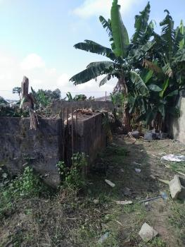 Land, Orimenumu Close to Depper Life, Orimerunmu, Ibafo, Ogun, Mixed-use Land for Sale