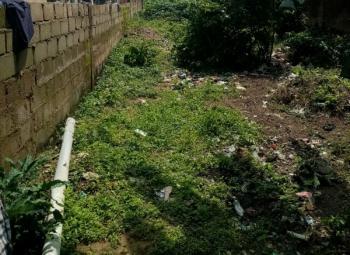 Land, Lagos-abeokuta Expressway, Ijaiye, Lagos, Mixed-use Land for Sale