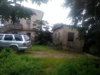 Farm House and Farm, Ipamesan, Sango Ota, Ado-odo/ota, Ogun, Commercial Property for Sale