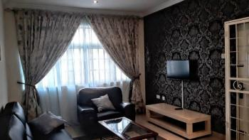 Luxury 1 Bedroom Fully Furnished & Serviced Upper Floor Apartment, Wuse 2, Abuja, Mini Flat for Rent