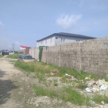 800sqm of Bare Land, a Plot Away From The Lekki-ajah Express Way Oko-addo Before Sangotedo, Olokonla, Ajah, Lagos, Mixed-use Land for Sale