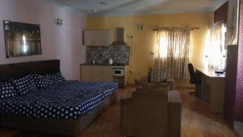 Luxury and Serviced 2 Bedroom Flat with Gym Facilities, Lekki Phase 1, Lekki, Lagos, Flat for Rent