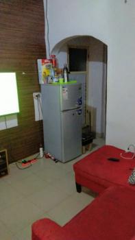 Mini Flat in Serene Environment, Sariyu Street, Sabo, Yaba, Lagos, Mini Flat for Rent