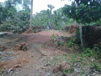 a Dry Land Measuring 655sqm Dry and Fenced, Ajao Estate, Isolo, Lagos, Residential Land for Sale