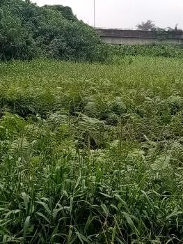 700 Square Metres of Land, Oja Oba / Abule Egba Facing The Expressway, Ijaiye, Lagos, Mixed-use Land for Sale