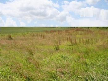a Fantastic 500 Square Metres Land for Sale at Lekki Phase 1, Lekki, Lekki Phase 1, Lekki, Lagos, Land for Sale