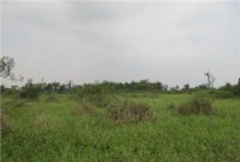 1000 Square Metres Land for Sale on Cooper Road, Ikoyi, Ikoyi, Lagos, Land for Sale