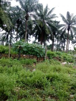 4000 Acres of Ocean Front Land, Owode Apa, Badagry, Lagos, Mixed-use Land for Sale