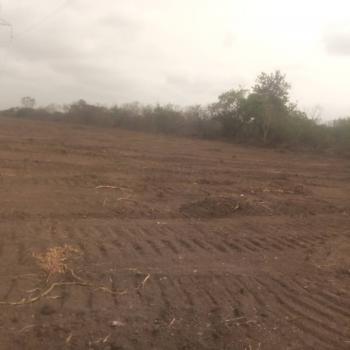 100 Acres of Land, Igboidun, Offa, Kwara, Mixed-use Land for Sale