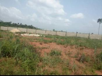 Virgin Dry Land for All Purpose- Greenview Estate, Close to Imota and The New Mile 12 Market, Agbowa, Ikorodu, Lagos, Mixed-use Land for Sale