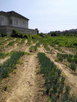 650sqm Bare Land, Phase2, Gra, Ogudu, Lagos, Residential Land for Sale