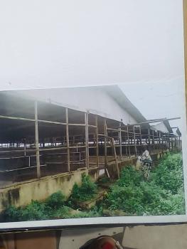 Large Farm, Badagry Road, Oko Afo, Badagry, Lagos, Factory for Sale