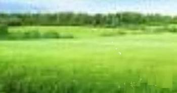 1000 Square Metres Land, Ikoyi, Lagos, Land for Sale