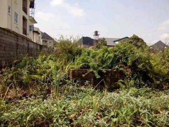 a Full Plot of Land in a Good Location, Off Paddy Chuka Street, Ago Palace, Isolo, Lagos, Residential Land for Sale