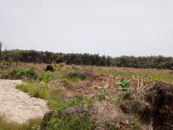 Plots of C of O Land, Green Spring School, Awoyaya, Ibeju Lekki, Lagos, Mixed-use Land for Sale