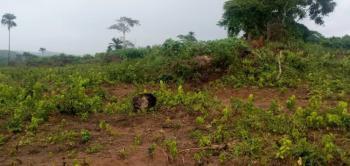 Residential Land in a Serene Environment, Umuwuagu, Asaba, Delta, Land for Sale