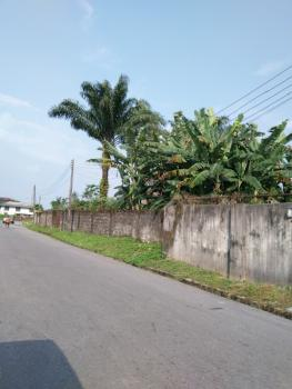 Rare Large 100x200 Plot in G.r.a. Warri, Swamp Road, Warri, Delta, Mixed-use Land for Sale