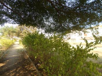 Garden Space, Apo, Abuja, Commercial Land for Rent