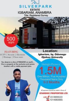 Land, Igbariam By Odumegwu Ojukwu University, Awka, Anambra, Residential Land for Sale