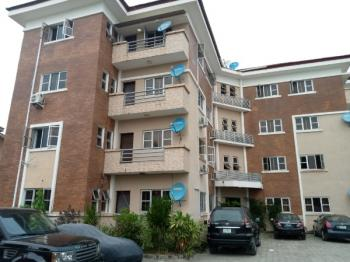 a Service 2 Bedroom Flat with a Room Boys Quarter Is Now Available, Igbo Efon, Lekki, Lagos, Flat for Rent