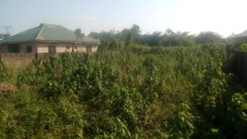 Plot of Land, Behind Lucky Fibre Company/ Hypo, Immediately After Laspotech Fence, Ikorodu, Lagos, Residential Land for Sale