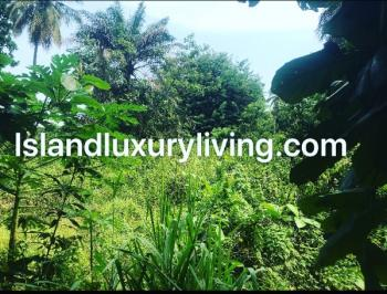 Vi 2000sqm Bareland with Approval for Sale, Off Ademola Adetokunbo Vi, Victoria Island (vi), Lagos, Mixed-use Land for Sale