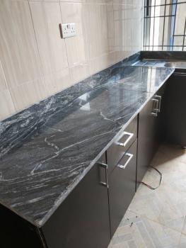 Newly Built Luxury 1 Bedroom Flat, Ogba, Ikeja, Lagos, Mini Flat for Rent