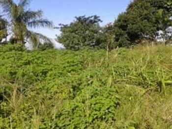 a Parcel of Land Measuring 806sqm, Banana Island, Ikoyi, Lagos, Mixed-use Land for Sale