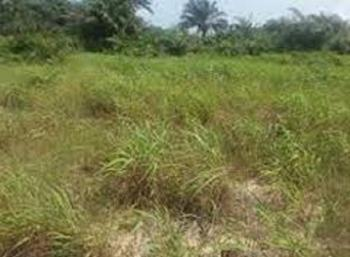 Residential Land, Lekki Phase 1, Lekki, Lagos, Residential Land for Sale