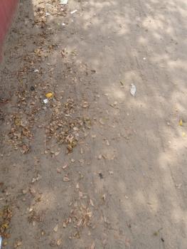 Plots with Payment Plan, Beachwood Estates, Imalete Alafia, Ibeju Lekki, Lagos, Residential Land for Sale