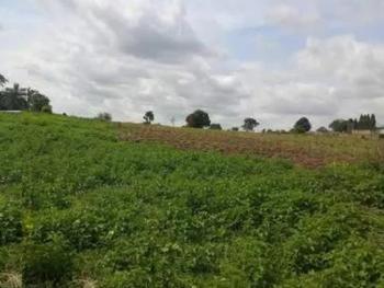 Residential Plot of Land Measuring 2,684sqm, Jabi, Abuja, Residential Land for Sale