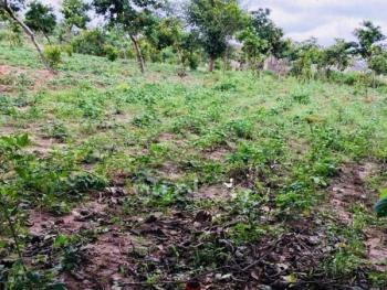 a Commercial Land Measuring 3,000sqm, Jahi, Abuja, Commercial Land for Sale