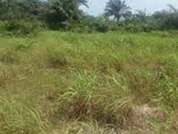 Land Available, Rev Ogunbiyi Street Off Obaakinjobi, Ikeja Gra, Ikeja, Lagos, Residential Land for Sale