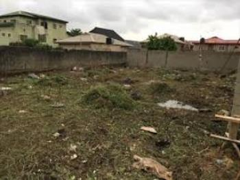 Corner Piece Land, United Estate Before Shoprite, Sangotedo, Ajah, Lagos, Land for Sale