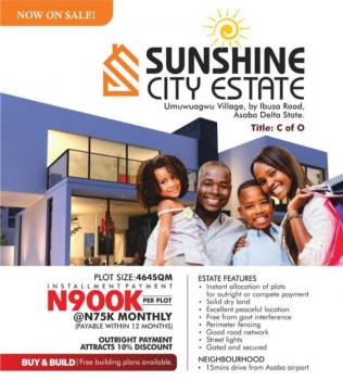 Many Acres of Land with C of O, Ibusa Road Near Airport, Asaba, Delta, Residential Land for Sale