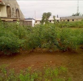 Land, Alimosho, Lagos, Mixed-use Land for Sale