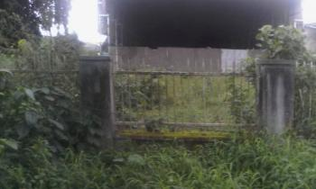 70 Plots of Land with a Massive Warehouse, Trans Amadi, Port Harcourt, Rivers, Warehouse for Sale